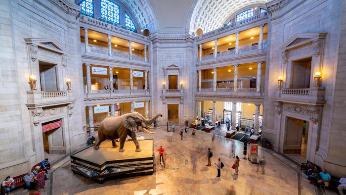 Куда пойти в сети: ТОП-5 лучших виртуальных музеев мира - фото 6