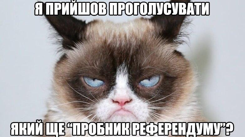 Убитая Эрика и детские анкеты: соцсети не унимаются из-за народного опроса Зеленского - фото 20