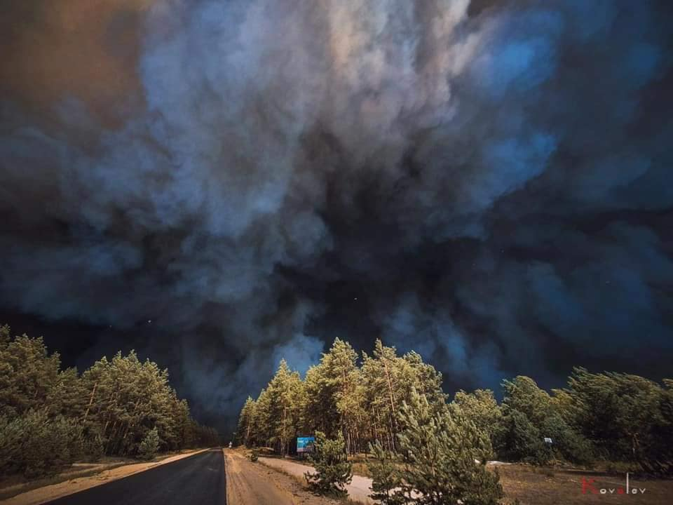 Пожары в Луганской области: устрашающие фото масштабного огня - фото 10