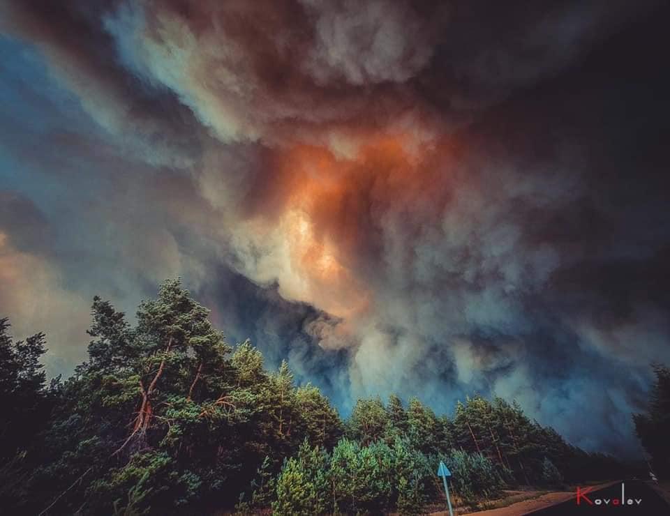 Пожары в Луганской области: устрашающие фото масштабного огня - фото 4