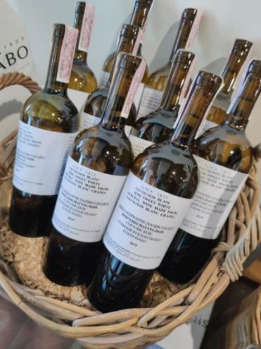 Сладко без сахара! Как SHABO единственная в Украине создает природно-полусладкие вина - фото 4