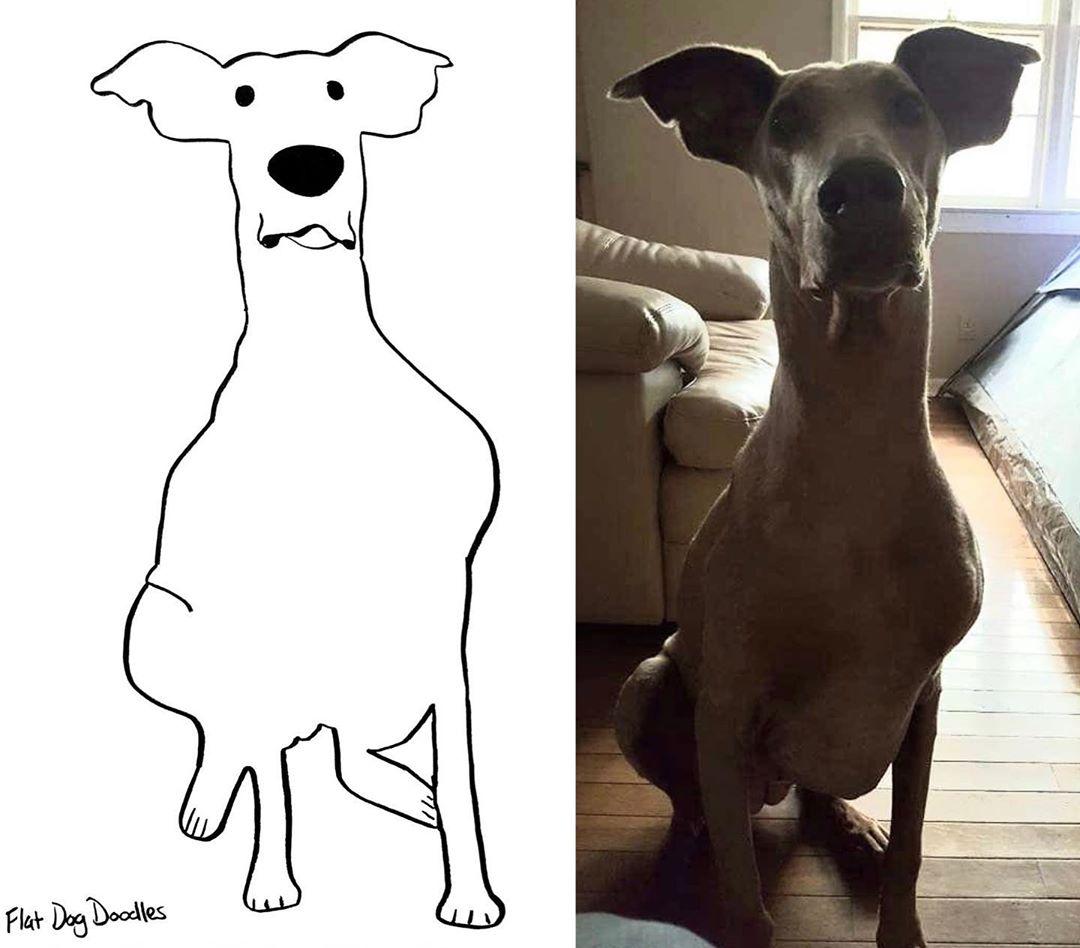 Художница прислала на конкурс рисунков абсолютно нелепый набросок любимого пса, и победила - в чем секрет - фото 2