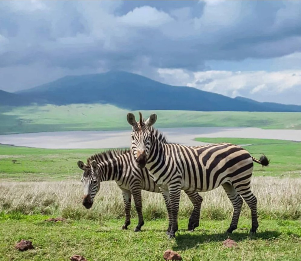 Путешественница показала загадочный мир Занзибара: уникальные снимки  - фото 3