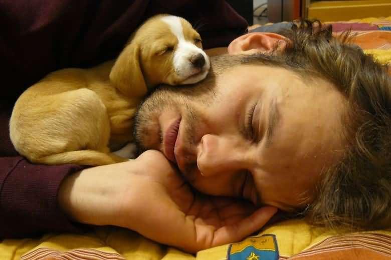 Хорошие фотографии, которые стоит посмотреть перед сном - фото 2