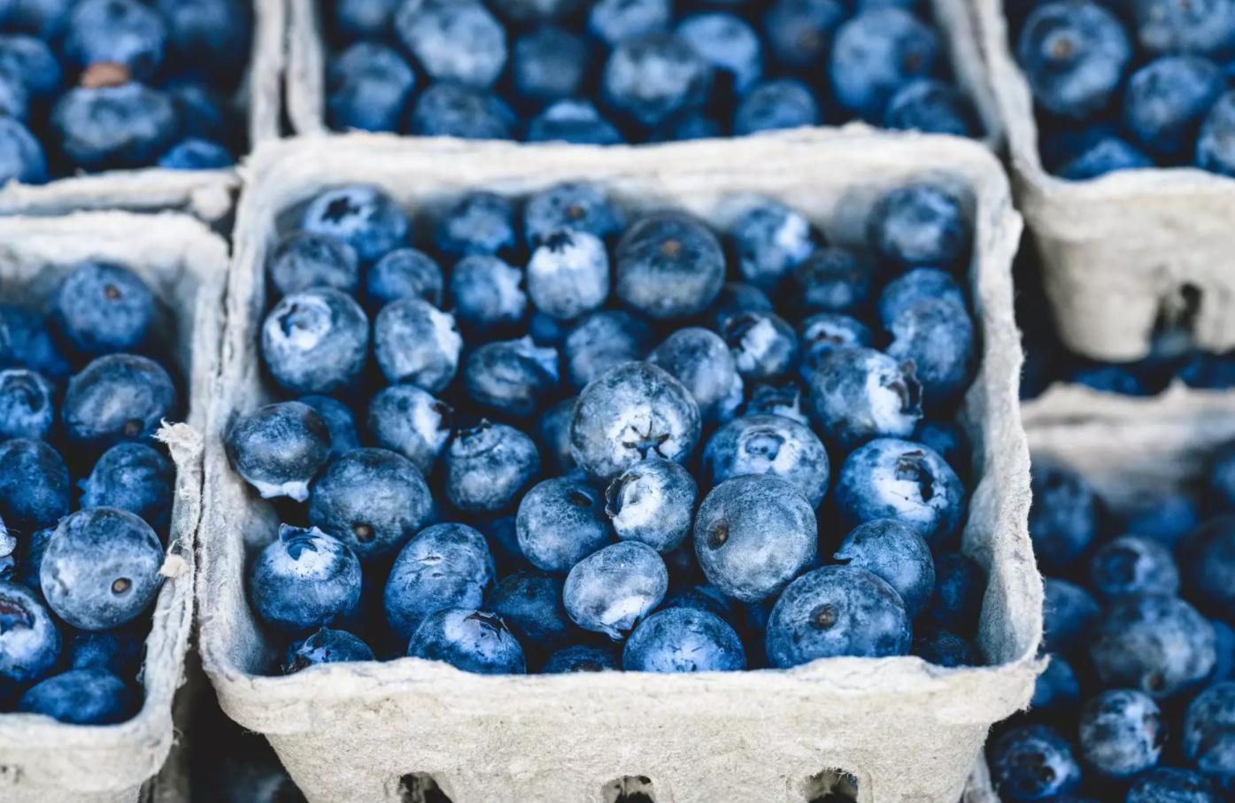 На прилавках Украины появилась черника: во сколько обойдется кило ягоды