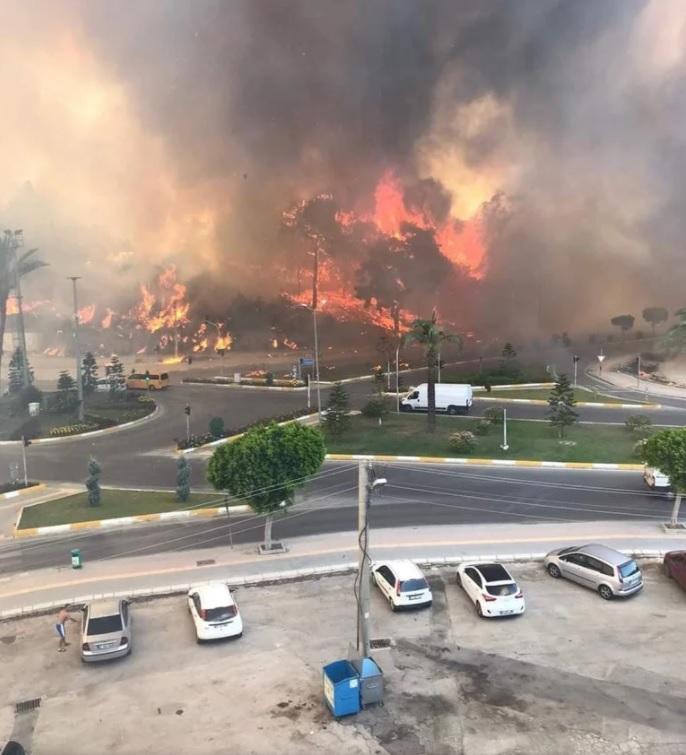 У Туреччині лісова пожежа дісталася до центру міста (ФОТО) - фото 2